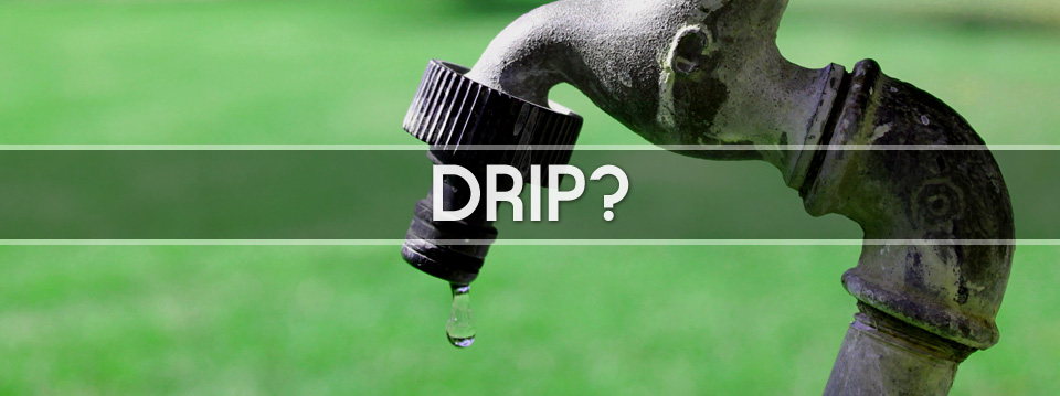 What is a DRIP?
