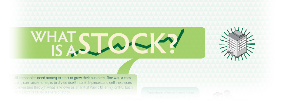 What is a Stock? [Infographic]