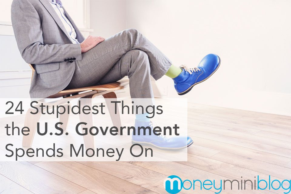 24 Stupidest Things the U.S. Government Spends Money On