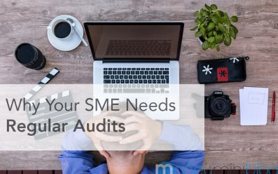 Why Your SME Needs Regular Audits