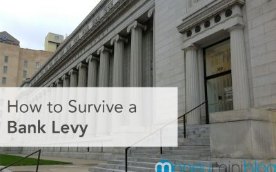 How to Survive a Bank Levy