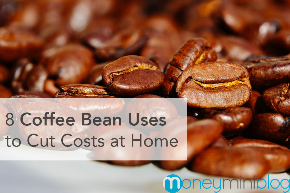 8 Coffee Bean Uses to Cut Costs at Home