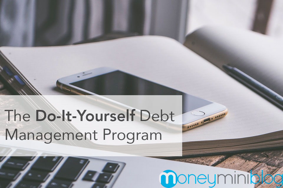 The Do-It-Yourself Debt Management Program
