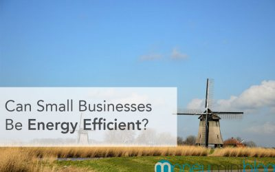Can Small Businesses Be Energy Efficient?