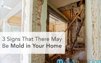 3 Signs That There May Be Mold in Your Home