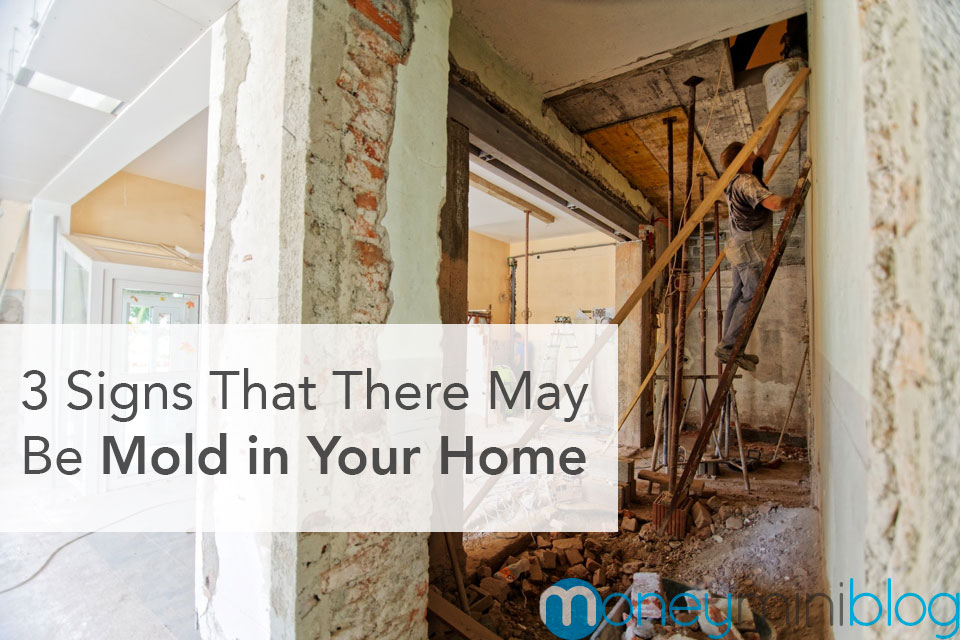 signs of mold home