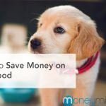 How to Save Money on Pet Food