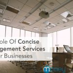 The Role Of Concise Management Services In Your Businesses