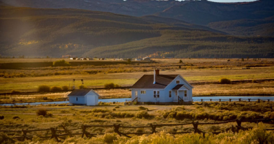 Should I Choose an Auction or a Broker When Selling Farmland?
