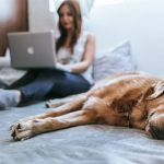 7 Productive Things To Do At Home While Having Fun