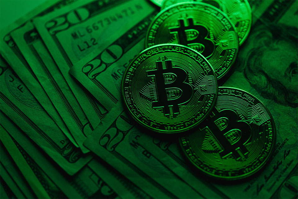 What You Need to Know Before Investing in Cryptocurrency