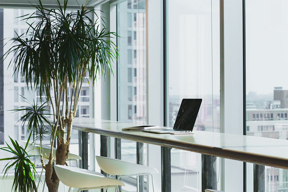 How Does Interior Design Affect Productivity?